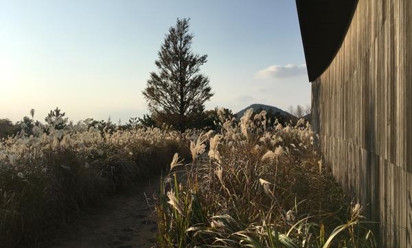 투어 사전예약하고 관람료를 낸 뒤에 볼 수 있는 제주 서귀포시 안덕면 비오토피아의 풍경. ⓒ제주의소리